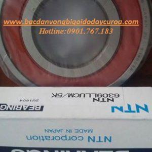BẠC ĐẠN - VÒNG BI 6334